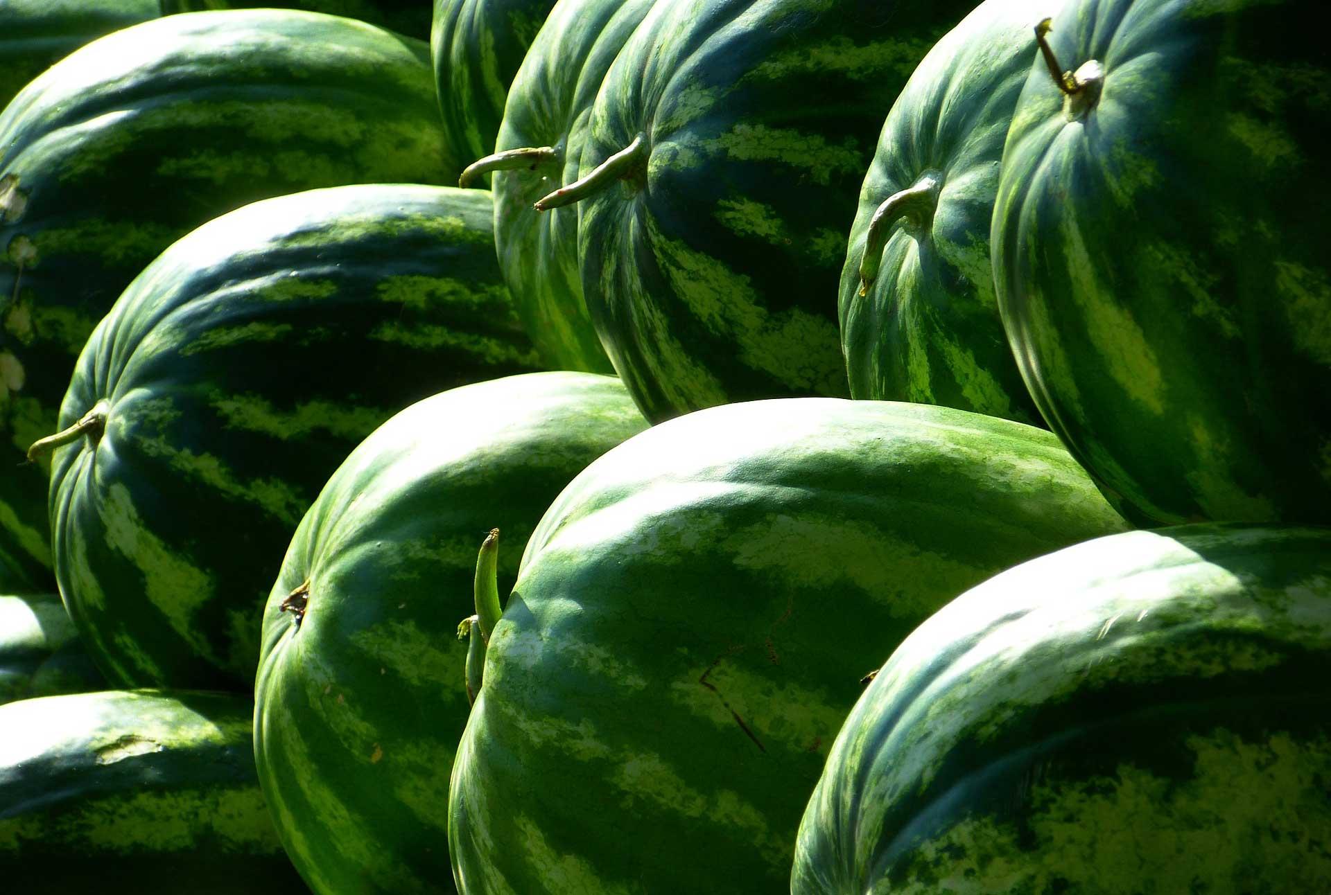 Farmlind Produce - Ironstone Farms